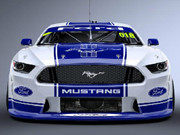 Ford Mustang Racing Beest